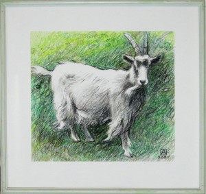 ASZKIEŁOWICZ ALFRED – Koza